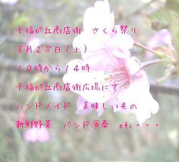 Imgp0650_2